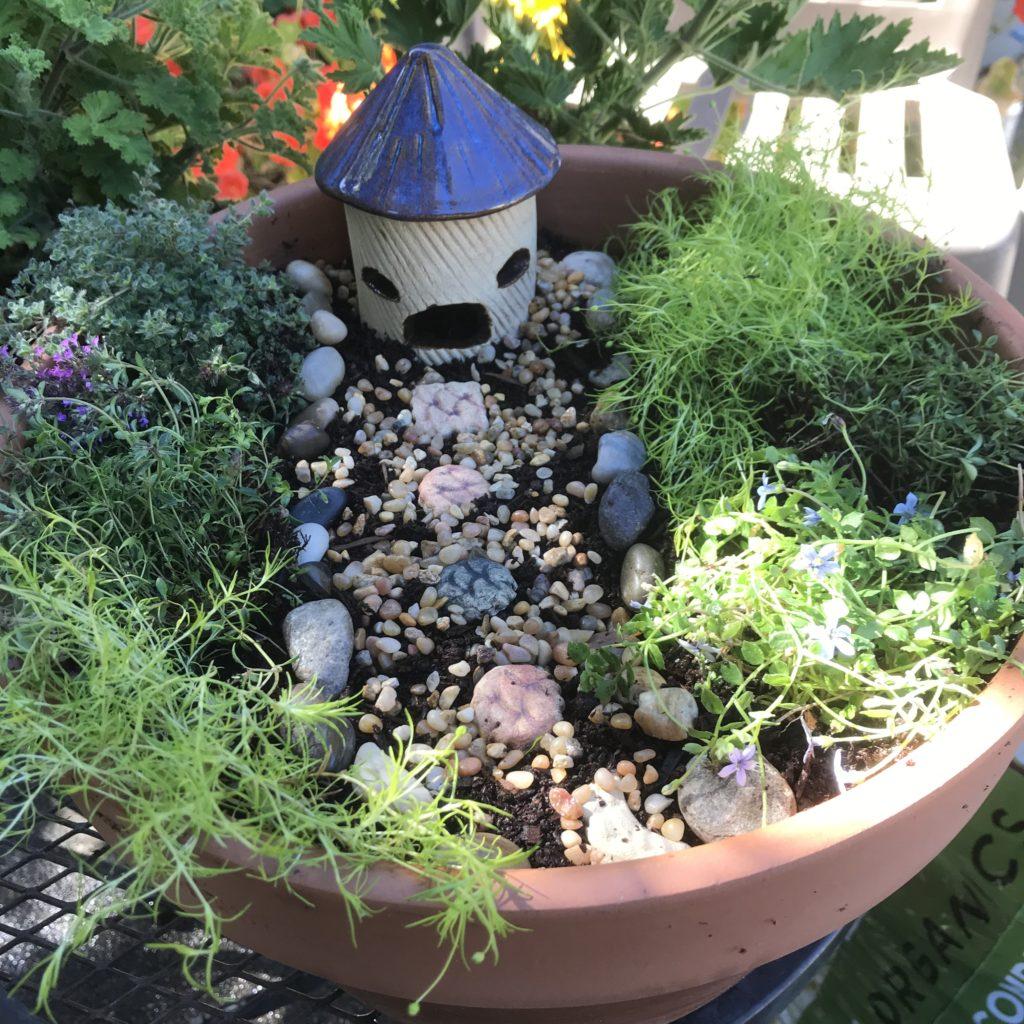Fairy Garden Example